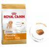 Royal_Canin_Poodle_Junior